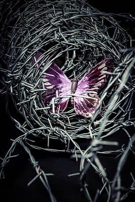 Butterfly Print by Joana Kruse