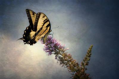 Fluttering Digital Art - Butterfly Landing by Jeff Burton
