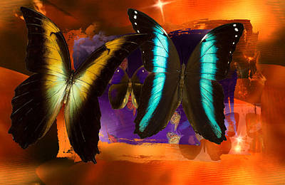 Butterfly Digital Art - Solar Light  by Joseph Mosley