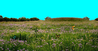 Butterfly Meadow Print by Larry Trupp