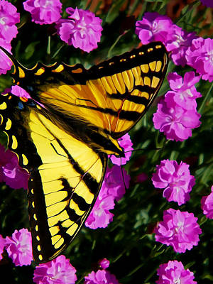 Floral Digital Art Digital Art Digital Art - Butterfly On Pink by Bill Caldwell -        ABeautifulSky Photography