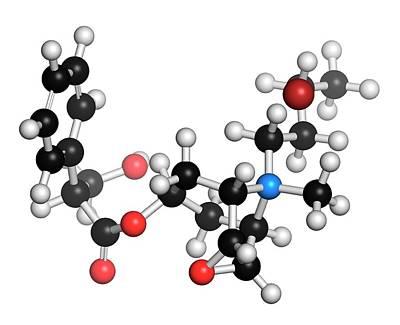 Chemical Photograph - Butylscopolamine Antispasmodic Drug by Molekuul
