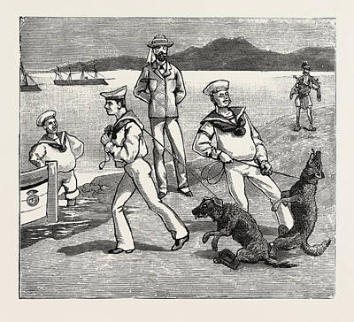 By Jove, Those Dogs Seem To Have Taken Quite A Liking Print by English School