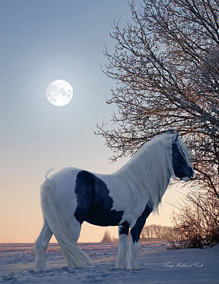 Gypsy Digital Art - By The Light Of The Silvery Moon by Terry Kirkland Cook