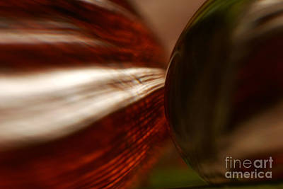 Decor Photograph - C Ribet Orbscape 1197 by C Ribet