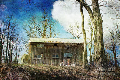 Cabin Fever Print by A New Focus Photography