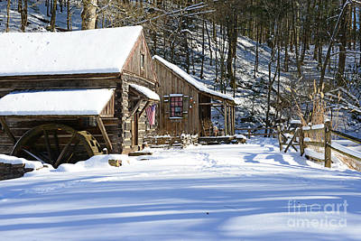 Mill In Woods Photograph - Cabin Fever by Paul Ward