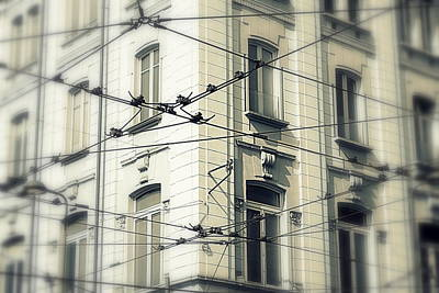 Old Milano Photograph - Cables by Valentino Visentini