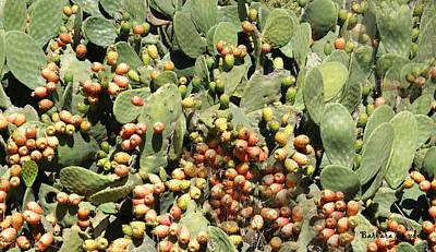 Pear Digital Art - Cactus Apples by Barbara Snyder