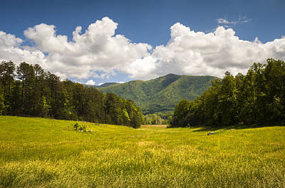 Cades Cove Great Smoky Mountains National Park - Gold And Blue Print by Dave Allen