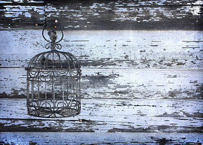 Abandoned Photograph - Cage by Larysa  Luciw