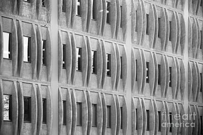 Pomona Photograph - Cal Poly Pomona Detail  by University Icons