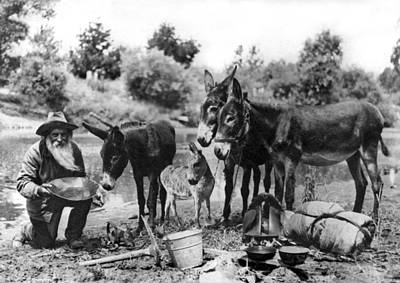 Forty Photograph - California Gold Miner by Underwood Archives