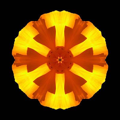 California Poppy Flower Mandala Print by David J Bookbinder
