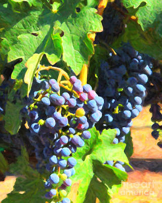 Winery Digital Art - California Wine Country Grape Vine 5d24630 by Wingsdomain Art and Photography