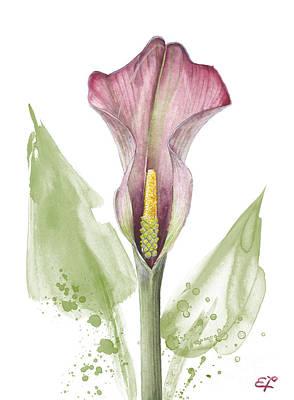 Painting - Calla Lily 01 - Elena Yakubovich by Elena Yakubovich