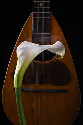Hand Made Photograph - Calla Lily And Mandolin by Garry Gay
