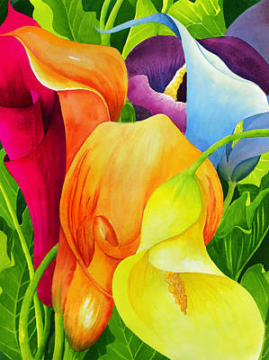 Purple Flowers Painting - Calla Lily Rainbow by Janis Grau