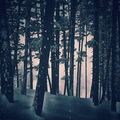 Mountain Photograph - #callmeforest by Cody Haskell