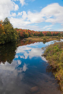 Adirondacks Photograph - Calm On The Moose River by David Patterson