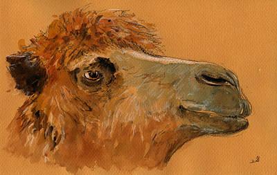 Camel Head Study Original by Juan  Bosco