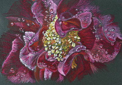 Camellia Rain Original by Michele Myers