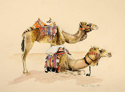 Desert Drawing - Camels From Petra by Alison Cooper