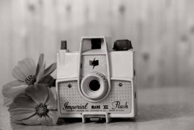 Camera Memories Print by Heather Allen