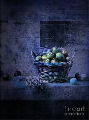 Violet Photograph - Campagnard - Rustic Still Life - S04ct01 by Variance Collections
