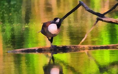 Goose Mixed Media - Canada Goose Spring Reflection by Dan Sproul
