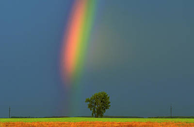 Striking Photograph - Canada, Manitoba, Dugald by Jaynes Gallery
