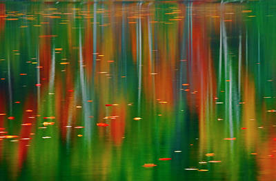 Canada, Ontario Autumn-colored Trees Print by Jaynes Gallery