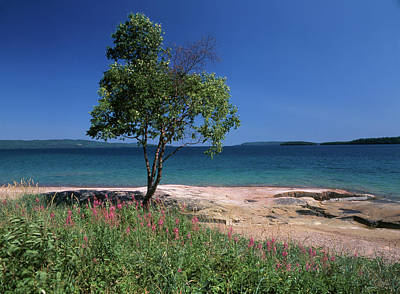 Large Format Photograph - Canada, Ontario, Lake Superior (large by Jaynes Gallery