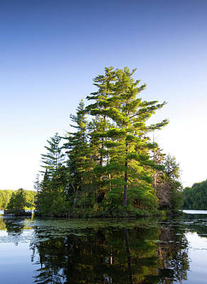 White Pines Photograph - Canada, Quebec Island On Lake Long Pond by Jaynes Gallery