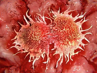Cancer Cells Dividing Print by Juan Gaertner