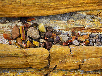 Petrified Forest Arizona Photograph - Candy Store by Skip Hunt