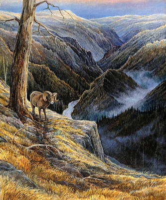 Salmon River Idaho Painting - Canyon Solitude by Steve Spencer
