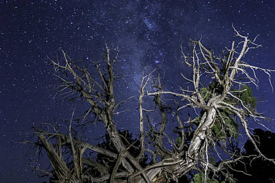 Autumn Photograph - Canyonlands Night Sky by Michael J Bauer