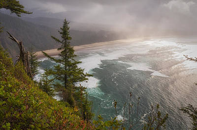 State Parks In Oregon Photograph - Cape Lookout Vista by Mary Angelini