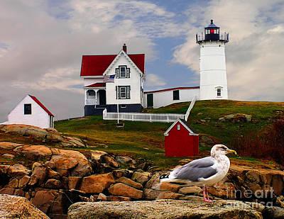Cape Neddick Lighthouse Maine Print by Nick Zelinsky
