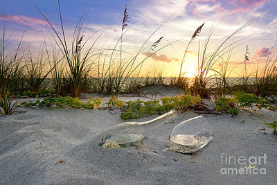 Seagrass Mixed Media - Captiva  Sunset by Jon Neidert