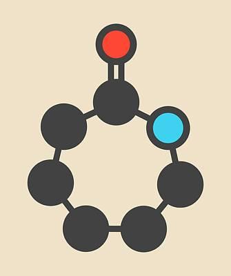 Polymer Photograph - Caprolactam Molecule by Molekuul