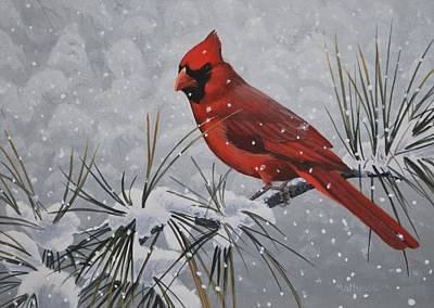 Cardinal In The Snow Print by Peter Mathios