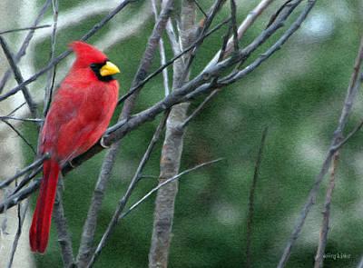 Cardinal Digital Art - Cardinal West by Jeff Kolker