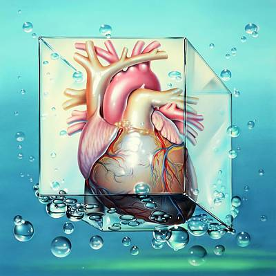 Shock Photograph - Cardiogenic Shock by John Bavosi