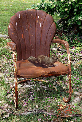 Lawn Chairs Photograph - Careful Where You Sit by Doug Kreuger