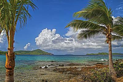 Photograph - Caribbean Breeze by Island Photos