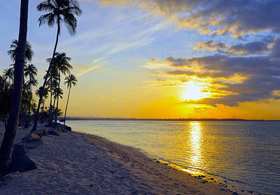Caribbean Sunset Print by Stephen Anderson