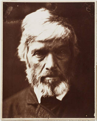 Carlyle Like A Rough Block Of Michael Angelos Sculpture Print by Julia Margaret Cameron