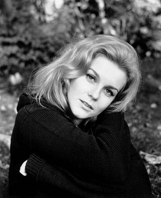 1970s Movies Photograph - Carnal Knowledge, Ann-margret, 1971 by Everett